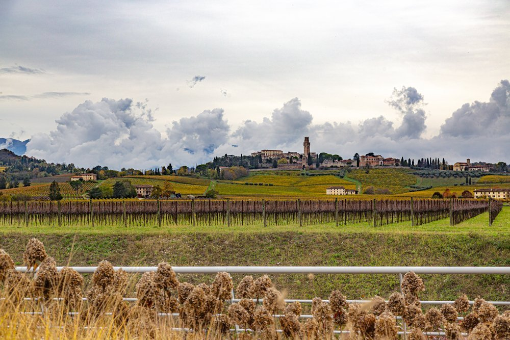 Cantina Borgoluce (TV) — Veneto Secrets