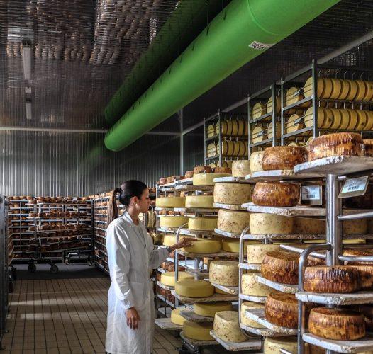 Crema del Piave Tomasoni — Veneto Secrets