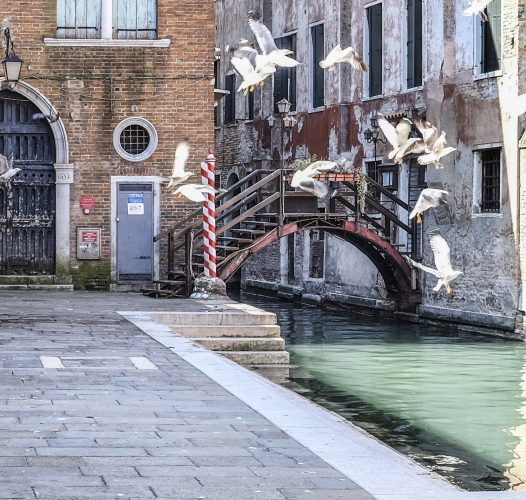 Venice: God and Time, Water and Beauty