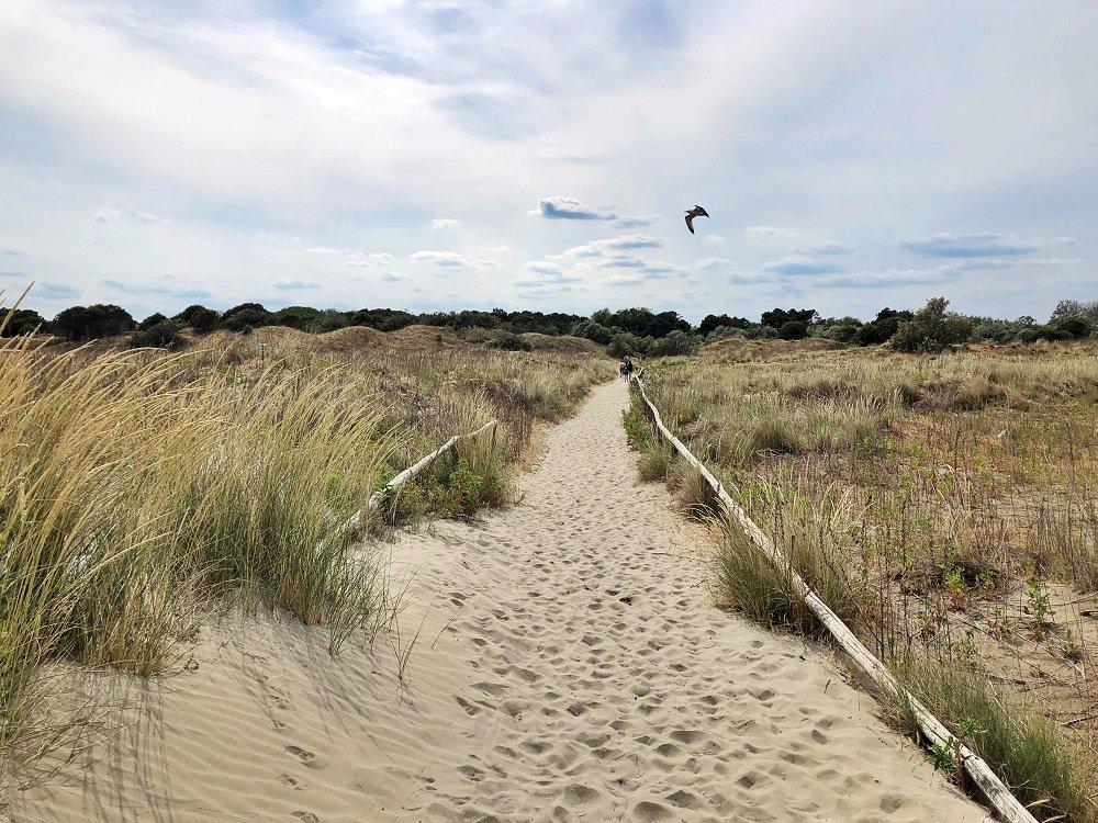 Cycling from Venice Lido to Pellestrina along the lagoon — Veneto Secrets