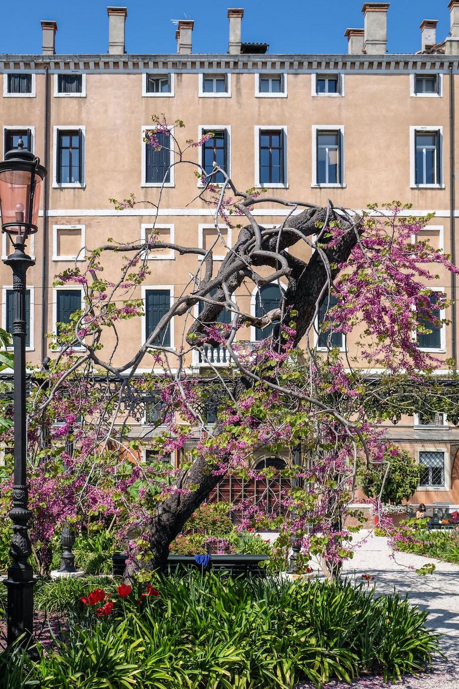 I Giardini Reali di Venezia